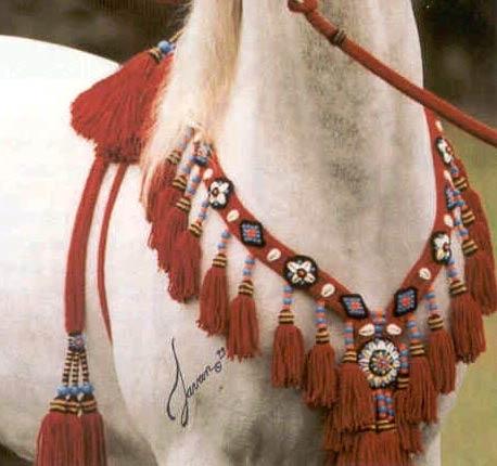 Authentic Arabian Halters Arabian Horses Of Diamond M